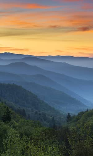 Testing the Hydrothermal Fluid Transport Model for Polonium Radiohalo Formation: The Thunderhead Sandstone, Great Smoky Mountains, Tennessee–North Carolina