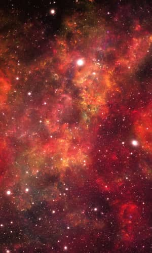 A Test for Quasar Cosmological Redshifts