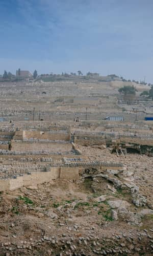 The Geology of Israel within the Biblical Creation-Flood Framework of History: 2. The Flood Rocks