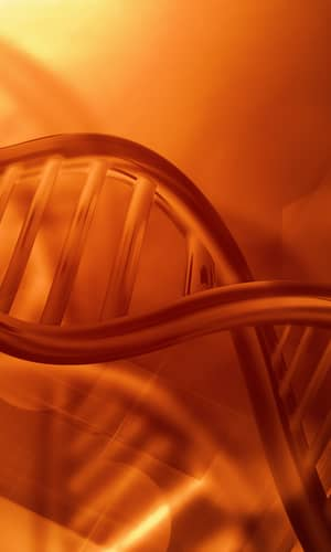 Toward an Accurate Model of Variation in DNA