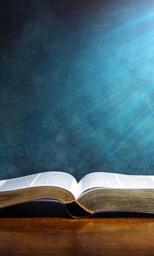 A Response to Peter Enns's Attack on Biblical Creationism